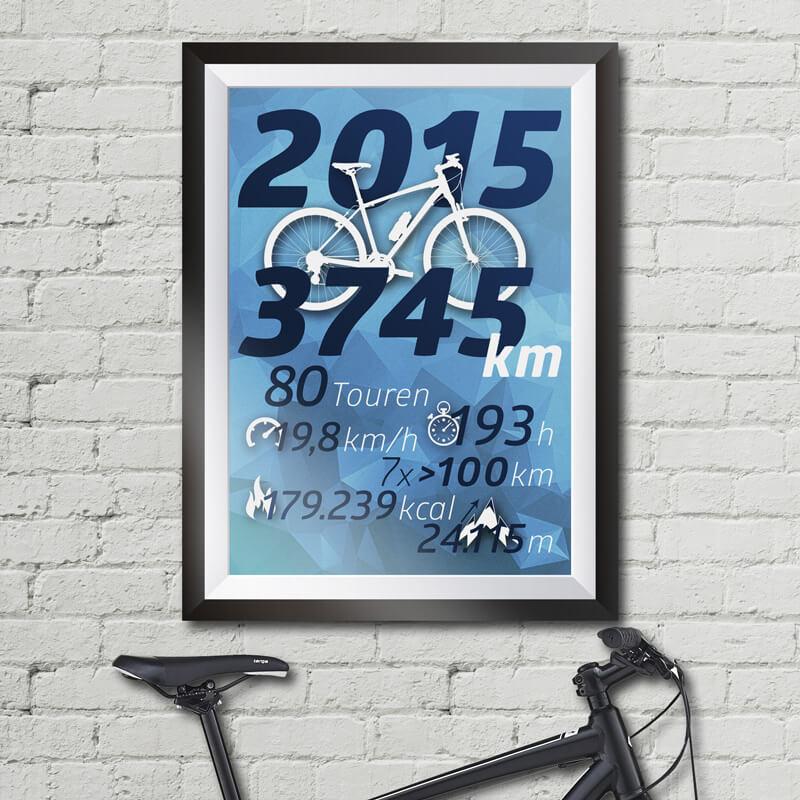 BikeStatistik2015